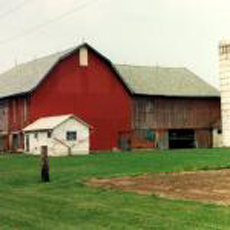 FARMS, BARNS & ART